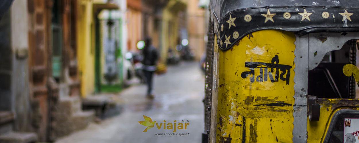 Kerala: Tranquilidad y Belleza  en La India