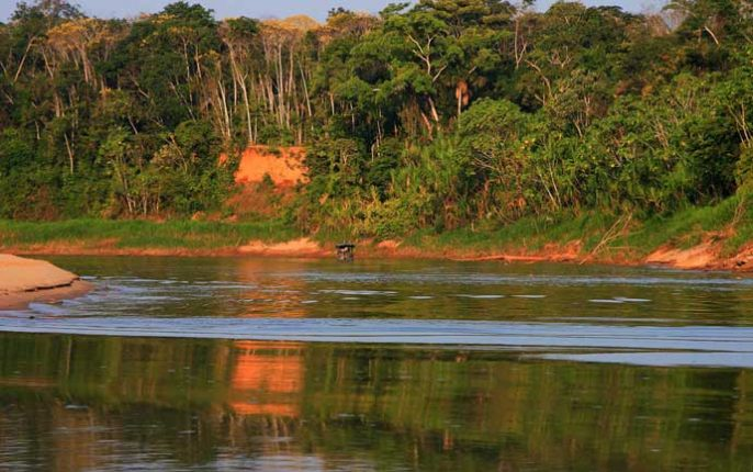 inkanatura-travel-destinations-tambopata
