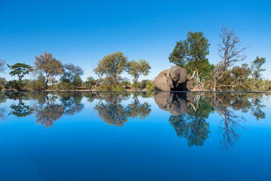 Conociendo la Reserva Privada de Timbavati