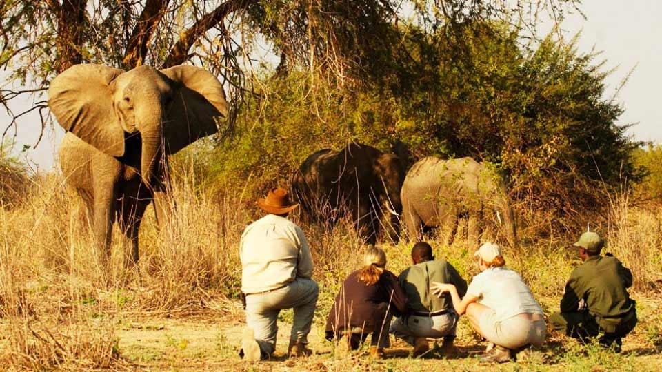 6 de los mejores destinos de ecoturismo en Sudáfrica