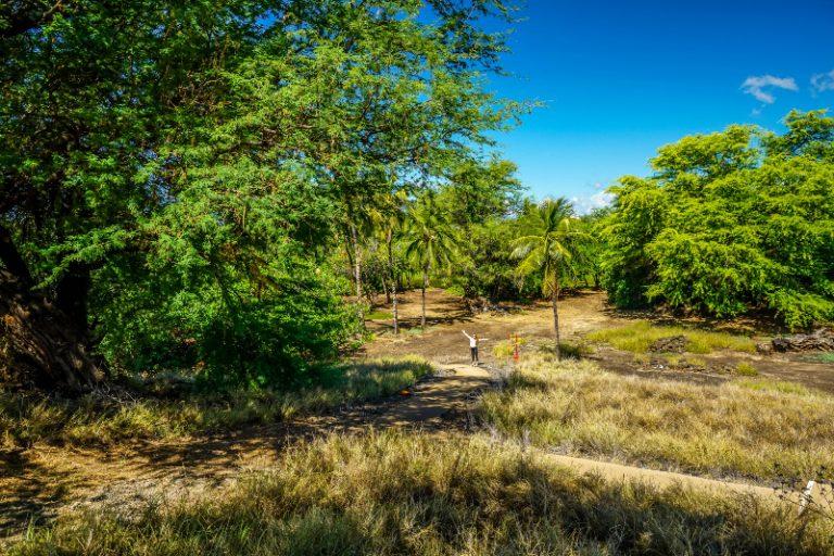 Sitio histórico nacional Pu'ukohola Heiau - Historia y cómo visitarlo