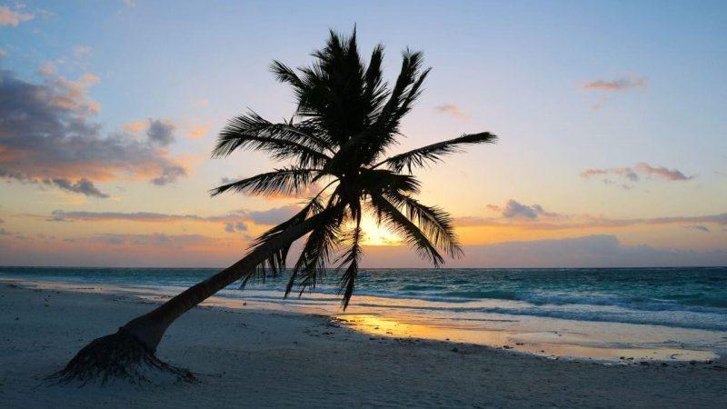 Actividades en playa del carmen