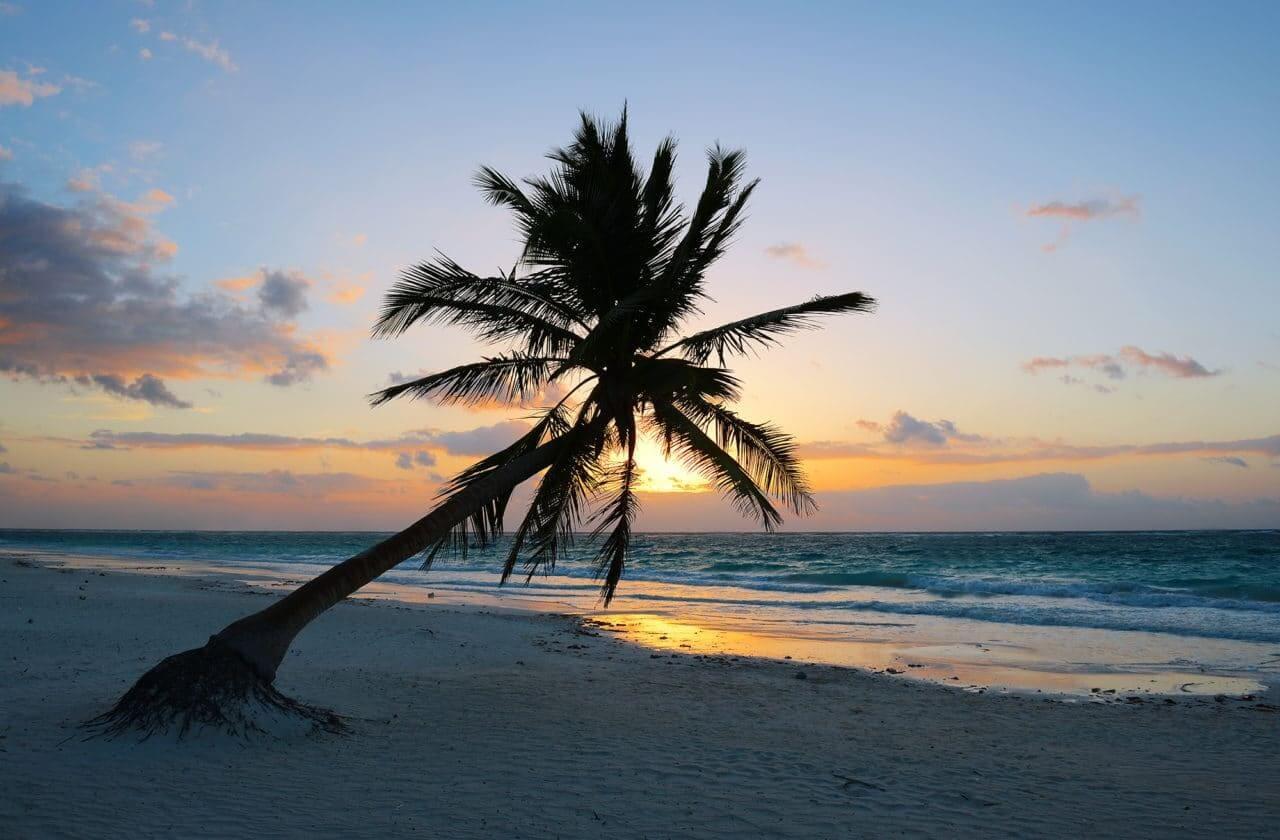 Las mejores cosas que hacer en Playa del Carmen (¡No te pierdas estos puntos destacados!)