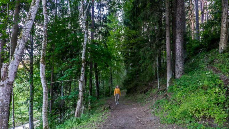 Mujer en parte de los senderos naturales de Ligatne Parque Nacional de Gauja Letonia