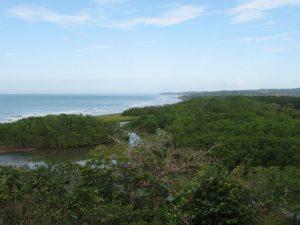 Playa Nosara y rio