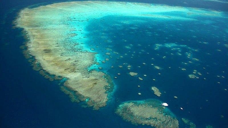 Moore Reef en la Gran Barrera de Coral Exterior - Crédito: ReefMagicCruises.com