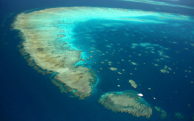 Cómo visitar la Gran Barrera de Coral