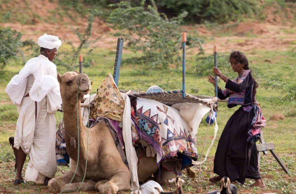 11 razones para visitar el desierto de El Rann de Kutch o Gran Rann de Kach