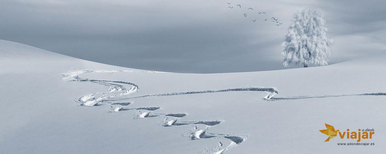Elige la nieve como destino, para esquiar… o no.